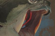 Der Panzerfisch