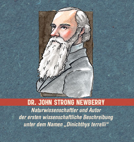 Illustration: Portrait eines Mannes mit langem weißen Bart (Dr. John Strong Newberry)