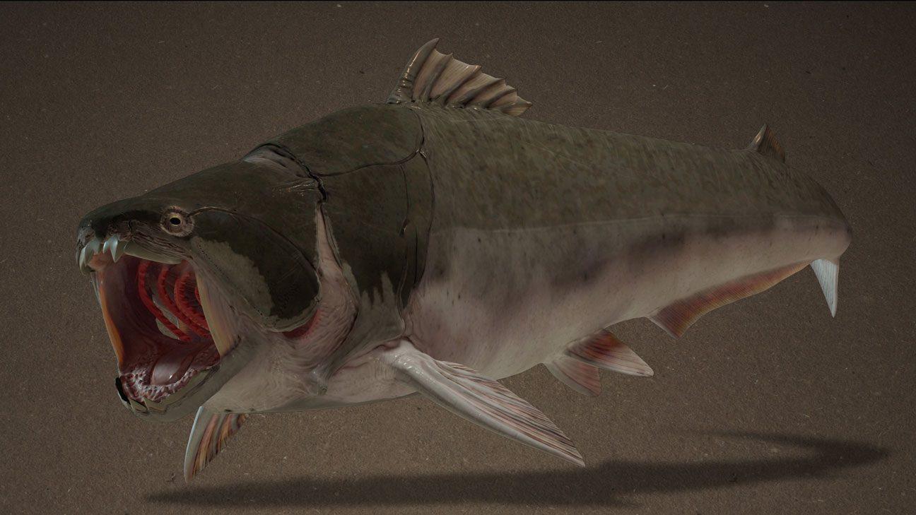 3D-Illustration: Rekonstruktion des prähistorischen Panzerfisches Dunkleosteus Terrelli (Placoderm)